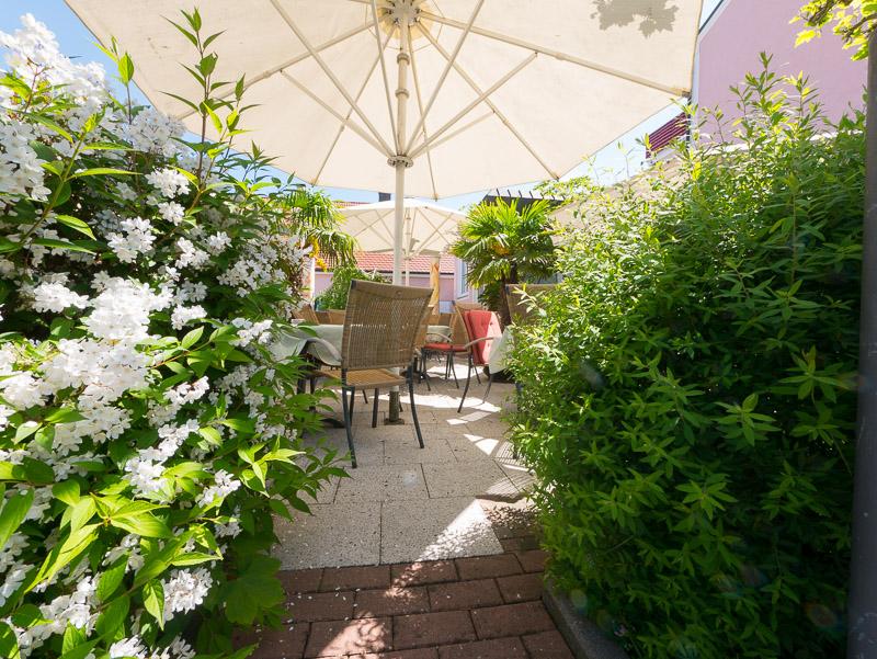 Café Holzbock